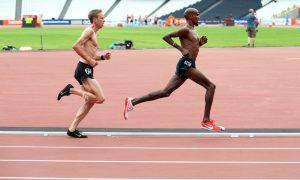 Training Systems - Marathon Training